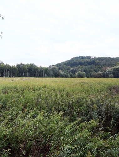 Undeveloped Area Towards the Border